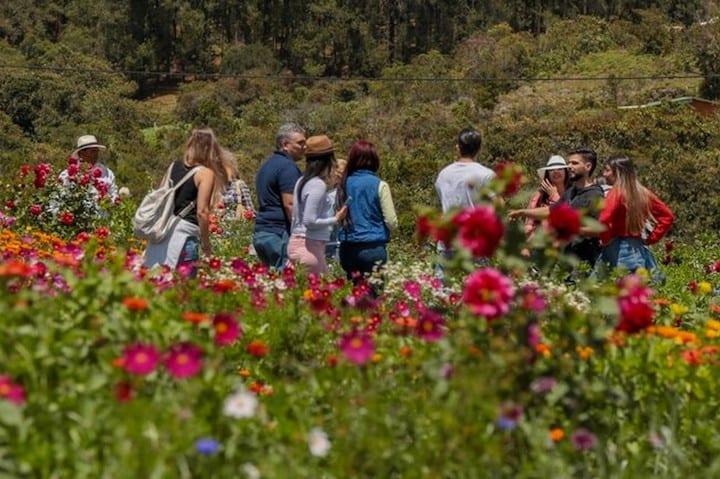 Tradición y naturaleza en Medellín.